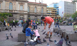 Picture of a family sightseeing in San José, Costa Rica and feeding birds in the Teatro Nacional park.